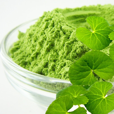 Pennywort powder